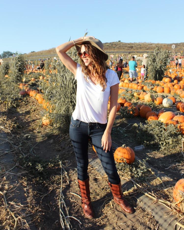 pumpkin16