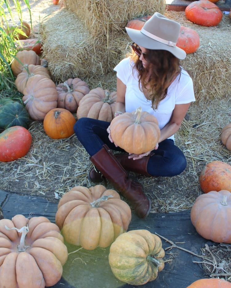 pumpkin18